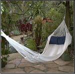 Quality Hammock Source Taino Natural / Ecru Hammock